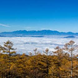 雲海と八千穂高原