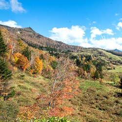 山田牧場周辺の紅葉