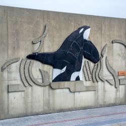 クジラの町、太地町